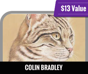 Colin Bradley - Cat Portrait Pastel Course