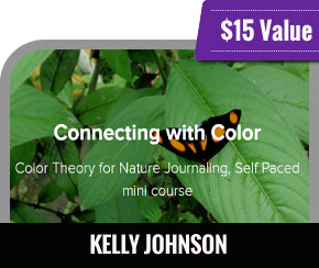Kelly Johnson - Connecting With Color